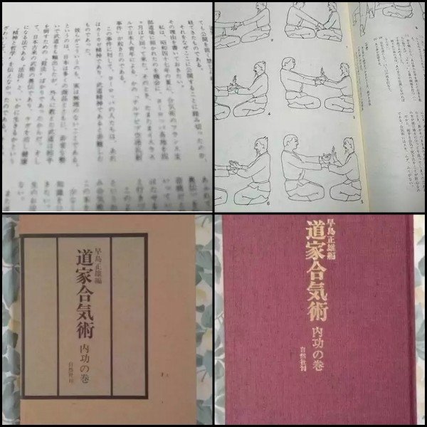 Daoist Aikijutsu
