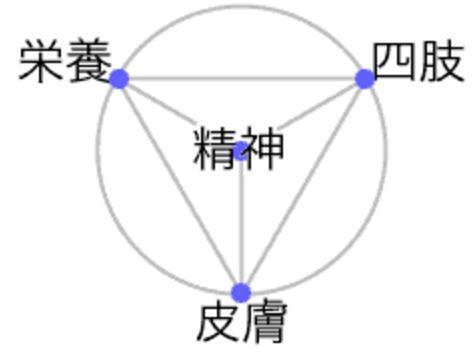 Nishi Health System Emblem