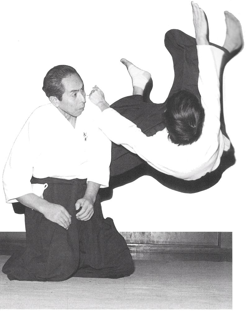 Aikido Images aikido sangenkai blog - honolulu, hawaii - oahu