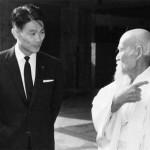 Interview with Aikido Shihan Shoji Nishio