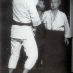 "Strange, Odd and False Theories of ""Aiki"""