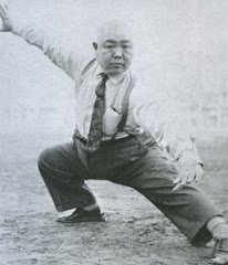 Wang Shujin Hawk