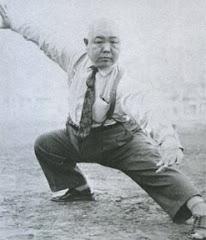 Wang Shujin Hawk