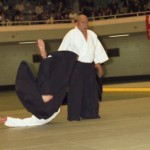 Aikido Shihan Nobuyuki Watanabe