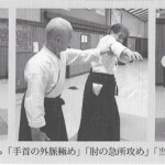 Yoshihisa Ishibashi - destabilization through pain