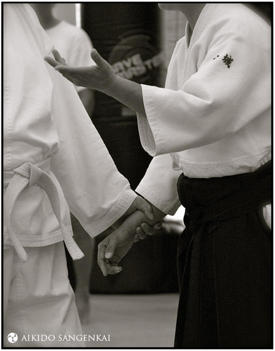 Dayna Kaneshiro at the Aikido Sangenkai