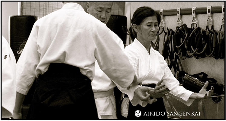 Sims at the Aikido Sangenkai